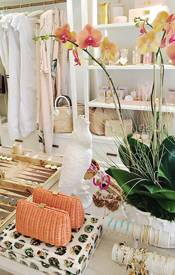 AERIN Palm Beach