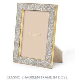 Dove-Shagreen-Frame