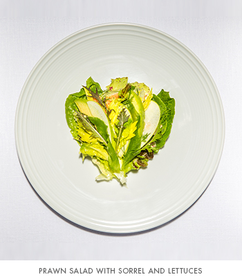 EMP Summer House's prawn salad with sorrel and lettuces