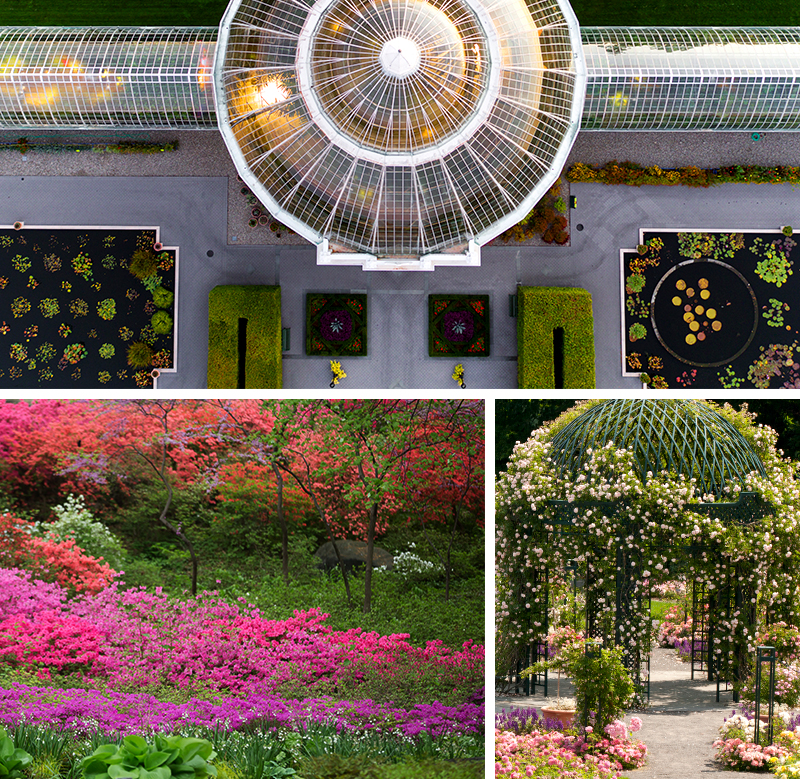 125 Years of the New York Botanical Garden