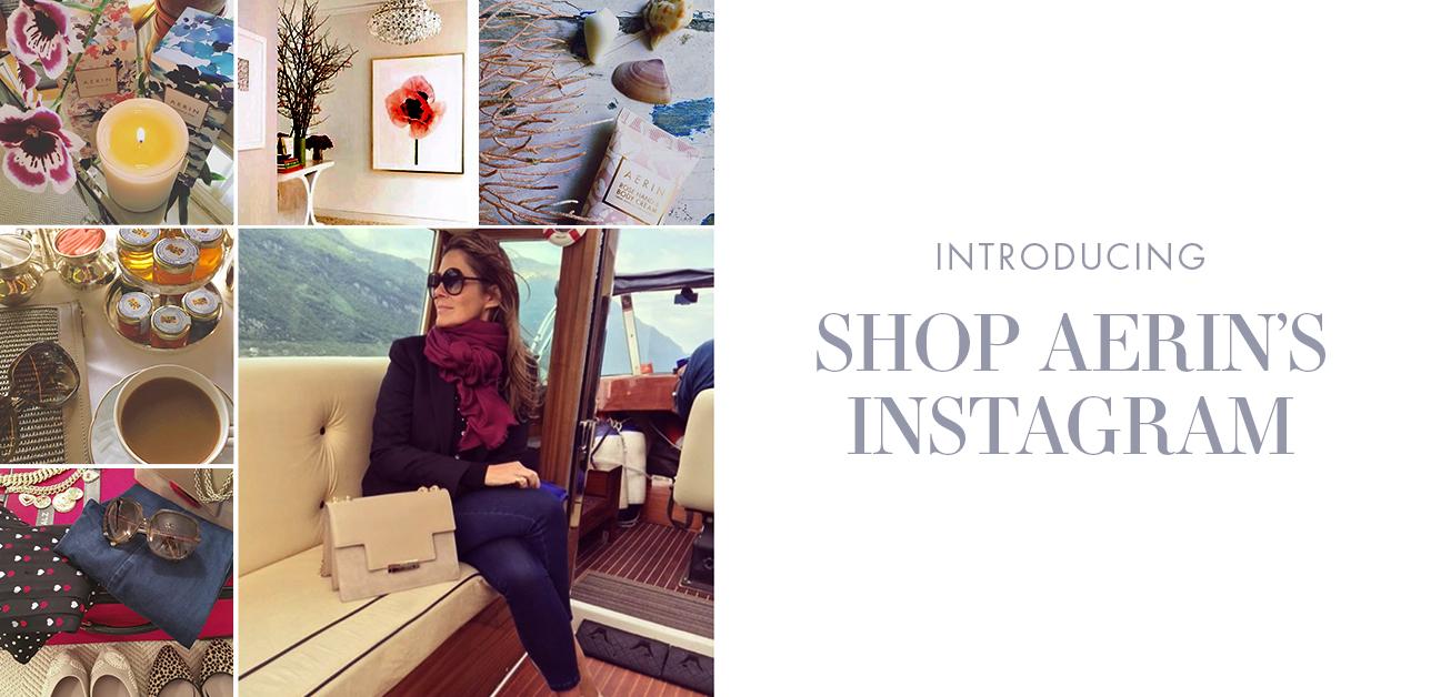 Shop Aerin's Instagram