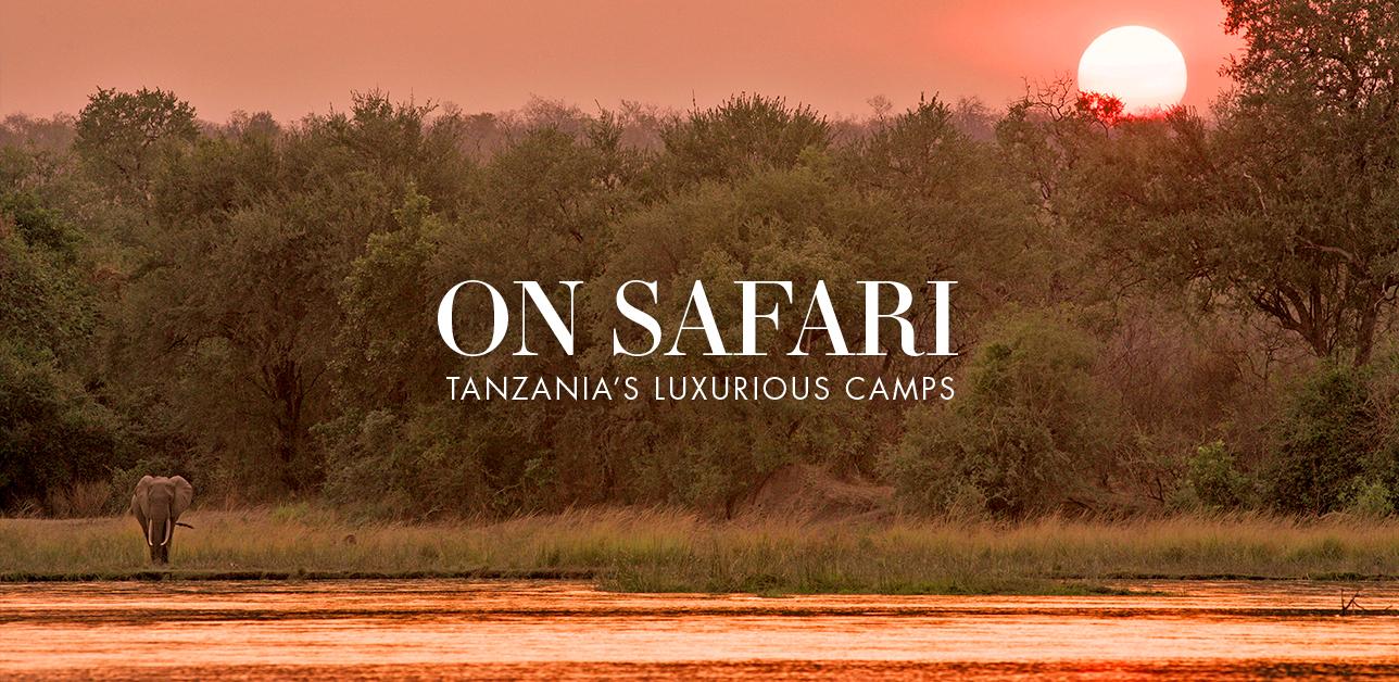 Tanzania's Luxury Camps
